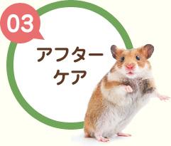 【03】アフターケア